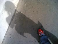 Photo344_2